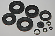 Kawasaki H2 Complete Engine & Crank Seal Set - 10 piece set