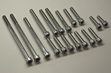 Kawasaki H2 Stainless Steel Bolt Set