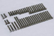 Kawasaki A1 & A7 Stainless Steel Bolt Set